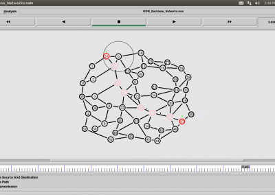 WDM Backbone Networks
